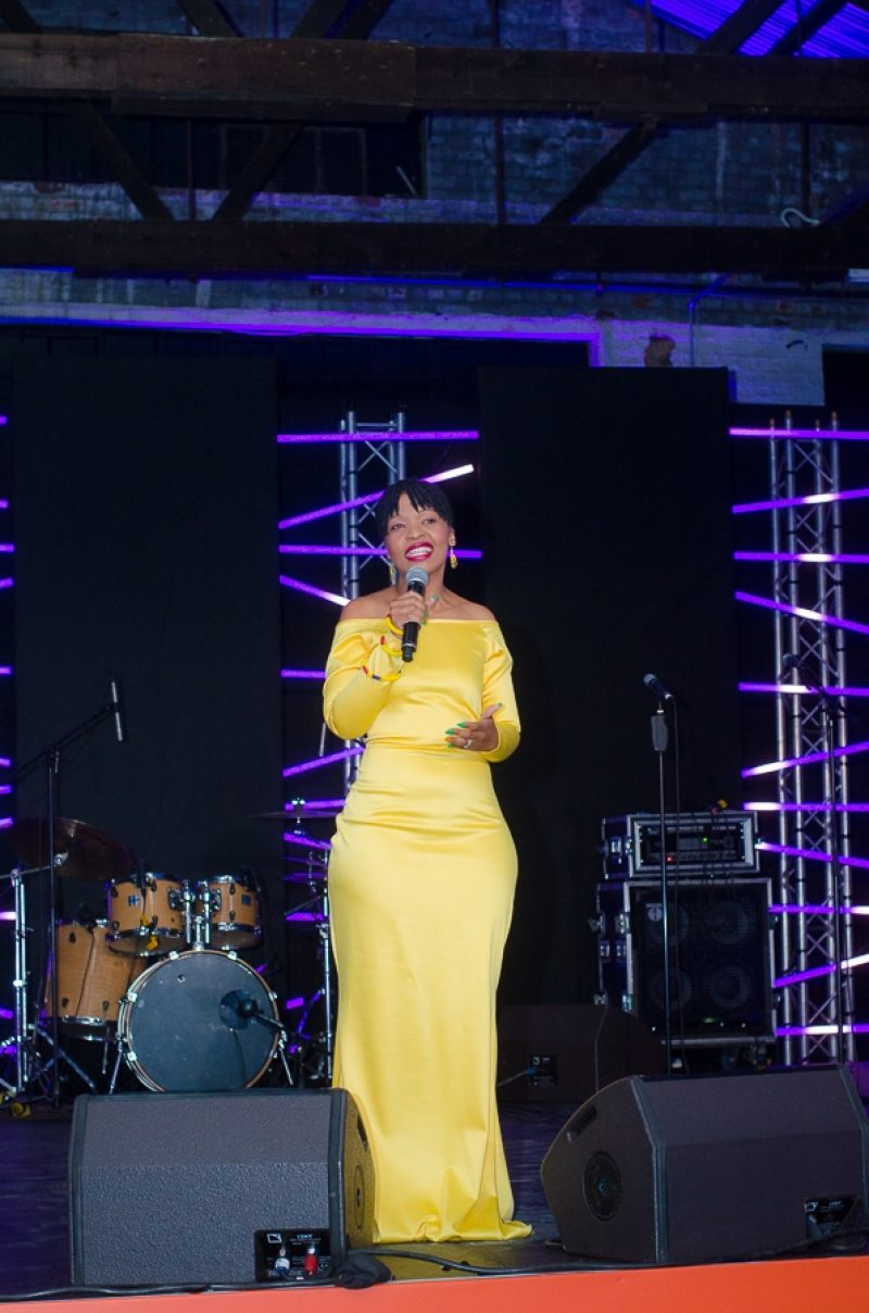 Stage Ubuntu Pathways Gala Dinner 2018 © Mia Mokgofe 2018 6