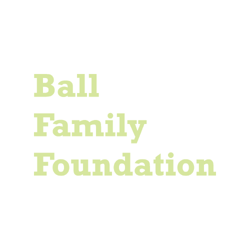 Web Ball Family Foundation Keylime