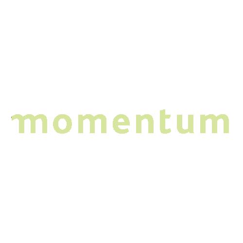 Web Momemtum Keylime