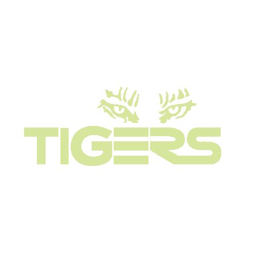 Web Tigers Keylime